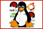 operatingsystem4.jpg